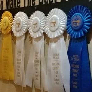 Ribbon Award Holder, Show Pen Display, Medal Display, Awards Display, Ribbon Medals Hanger, Custom Metal Signs, Farm Signs, Ranch Signs