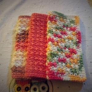 Set of 3 100% Cotton Dishcloths