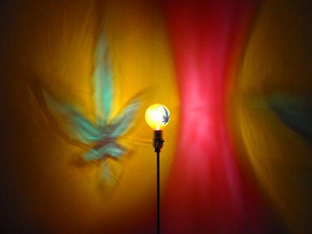 Hand-Painted Hemp Leaf Mood-Light Bulb