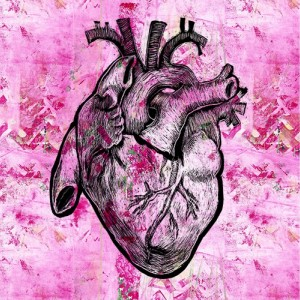 Corazon - Pink Anatomical Heart Print