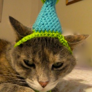 Crocheted Birthday Party or Clown Hat for Cat or Small Dog Costume Aqua and Lime Green