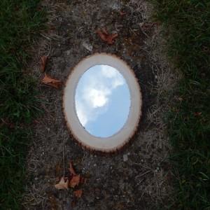 Rustic Wood Slice Mirror