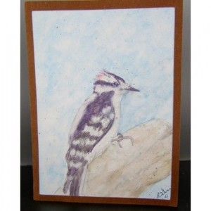 Downy Woodpecker, Watercolor Card