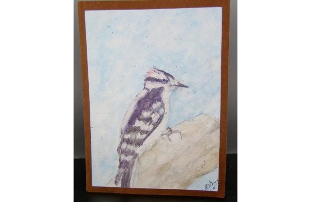 Downy Woodpecker, Watercolor Card