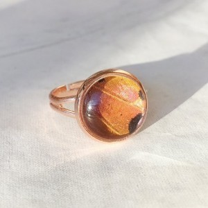 Real Butterfly Wing Ring - Real Butterfly Jewelry - Rose Gold Ring - Gift for Her - Orange Ring - Bohemian Jewelry - Nature Jewelry