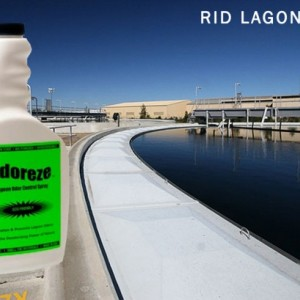 ODOREZE Natural Lagoon Odor Control Additive & Spray: 32 oz. Concentrate Treats 4,000 Sq. Yards