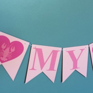 You're My Lobster Banner -Wedding Banner - Bridal Shower Banner - Bachelorette Party Banner - Jack and Jill Banner - Friends Inspired Banner