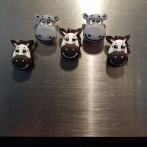 Magnets, 5 Strong Refrigerator Magnets, Cubicle Decor, Locker Magnets, Office,Hippo,Zebra,Zoo