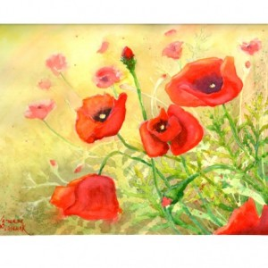 Sunlit Poppies print from original watercolor painting, 5x7