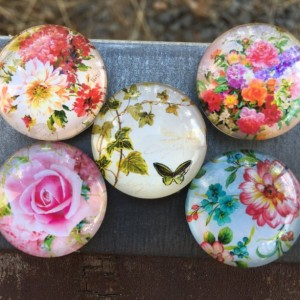 Floral Magnet Set (Set of 5)-glass dome- roses, violets, Kühlschrank, Цветы, magnete, aimant,magneet, magnético, imán, maighnéad,магнит
