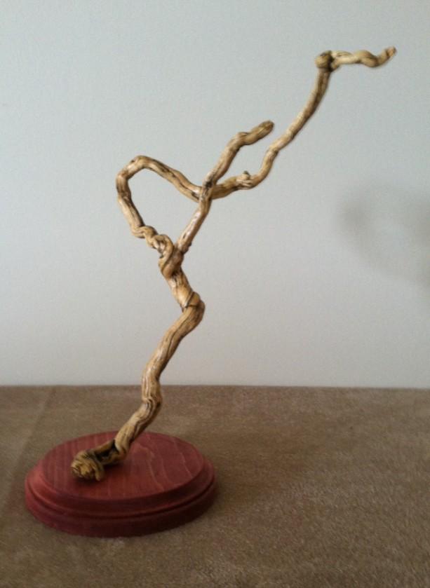 Windswept - Driftwood
