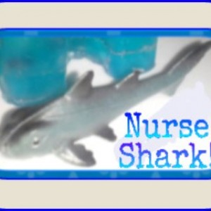 Nurse Shark Soap