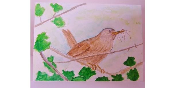 Wren Watercolor Card