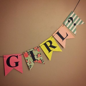 Gender Reveal Banner - Boy or Girl Banner- Baby Shower Banner - Gender Reveal Party - Baby Shower Decoration - Baby Reveal