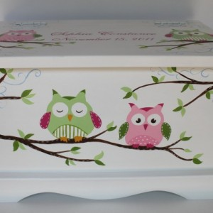 Owl Keepsake Chest  green/pink baby memory box personalized baby gift