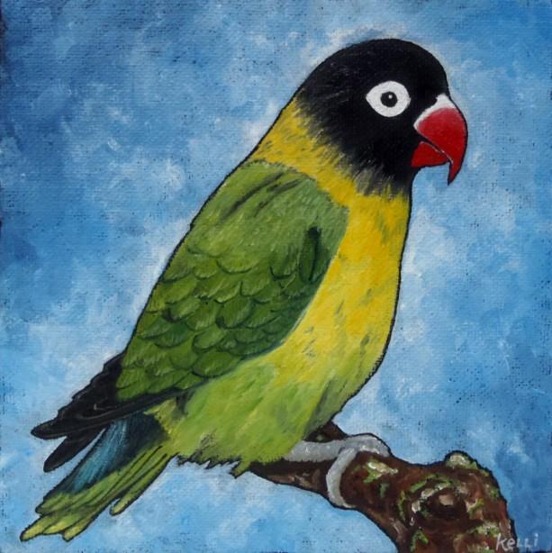 """Yellow-collared Lovebird"" original oil painting"
