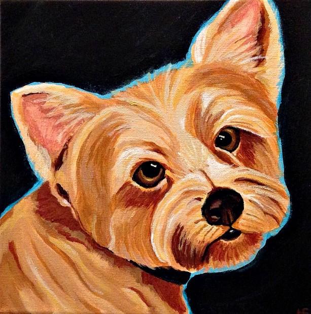 """Scruffers Dog Portrait 8""""x8"""""""