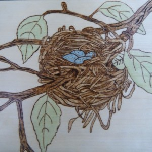 Pyrography robin bird nest art