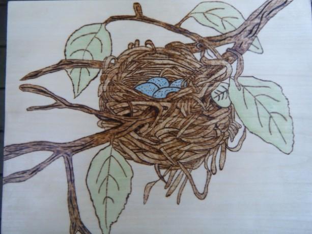 Pyrography robin bird nest art
