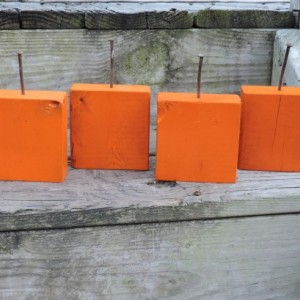 Pumpkin Orange Wood Display Blocks - Set Of 4
