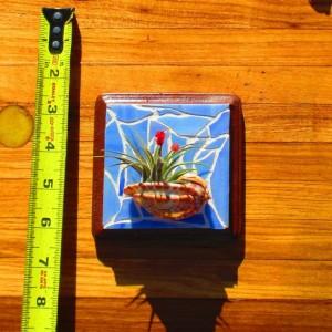Air plants, air plant gift, Air plant holder, Air plant hanger, plant lovers gift, planter, mosaic wall art, mom gift,