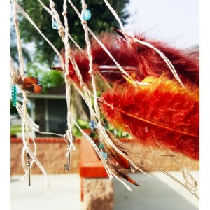 Feather Me Catcher