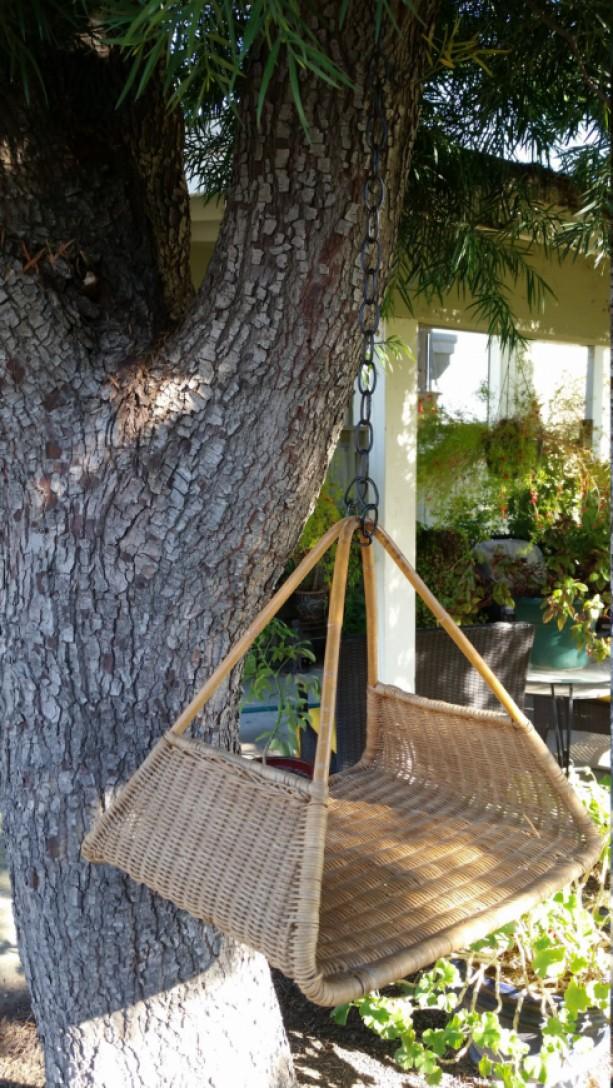 Outdoor/Indoor Hanging Garden