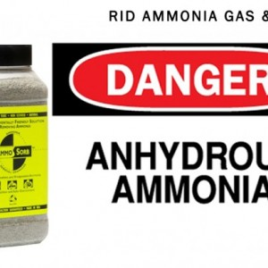 AMMOSORB Natural Ammonia Spill & Odor Absorbent  Deodorizer Granules: 2 lb.