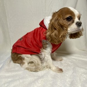 "XS Red plush hoodie 15-16"" girth"