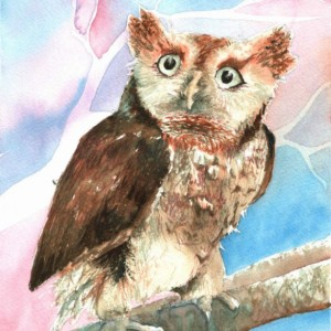 Nippers the Owl Watercolor Print from Original, 8x10
