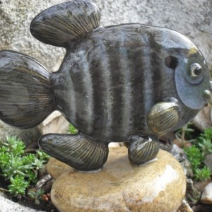 Blue Gill/Sun Fish Rock