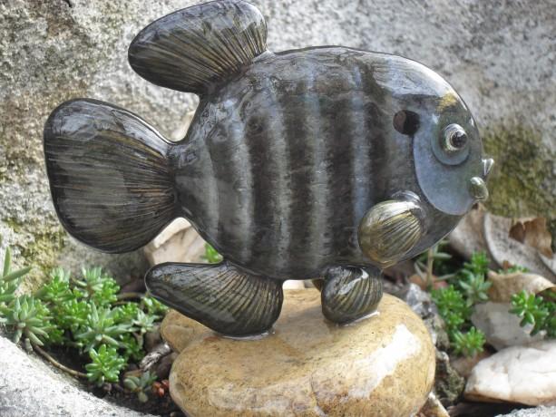 Blue Gill/Sun Fish Rock