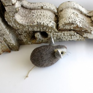 Pocket Mouse - Brownfield