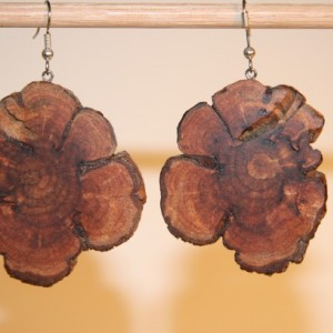 Pine Burl Earrings -1
