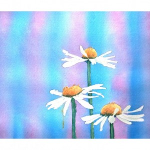 Daisies Print from Watercolor Painting Original, 8x10