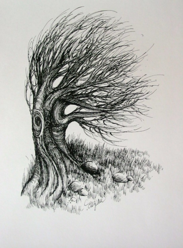 Pen & Ink Drawing of a Tree blowing in the wind