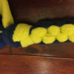 Dog Toy, Blue and Yellow Fleece I Want To Play Tug-O-War