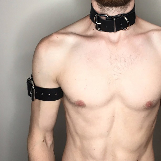 Universal Belting Collar / Restraint