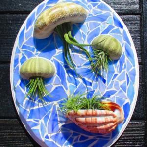 Air plants, air plant gift, Air plant holder, Air plant hanger, plant lovers gift, planter, Mosaic wall, Air plant jellyfish, Jellyfish