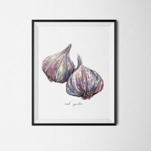 8x10 Garlic Print, Food Art, Food Illustration, Wall Art, Kitchen Art, Kitchen Decor, Kitchen Print, Cafe Art, Vegetable Print, Textured Paint