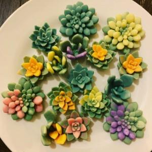 Succulent Soaps