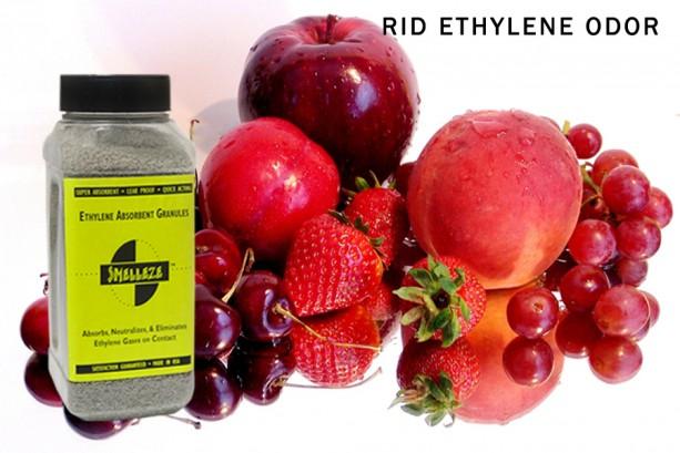 SMELLEZE Natural Ethylene Gas Absorbent Eco Granules- 1 mm: 2 lb.