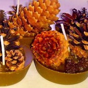 Father's Day Camping Pinecone Firestarters/Hunting/Hiking-Outdoorsman/Fireplace/Fire Pit/Pine Cone/Bonfire/Gift for Men