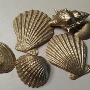 Unique Painted Seashells
