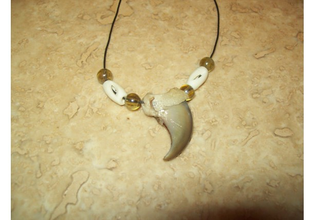 Real bear claw necklace Native American made