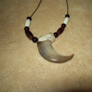 Real bear claw necklace Native American made almost 3