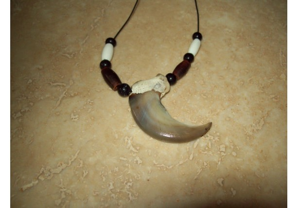 "Real bear claw necklace Native American made almost 3"" claw"