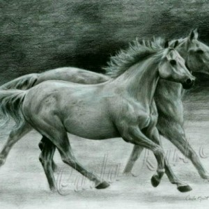 RUNNING FREE Horse art print by Carla Kurt Signed print
