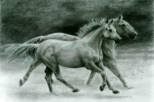 RUNNING FREE Horse art print by Carla Kurt Signed print