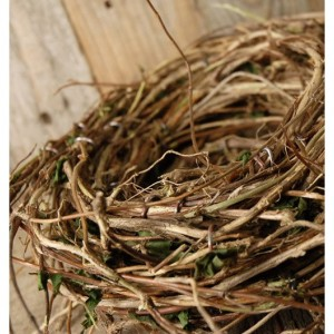 Birds Nest Centerpiece or Decor